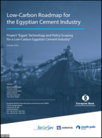 12 Egyptian Cement Industry